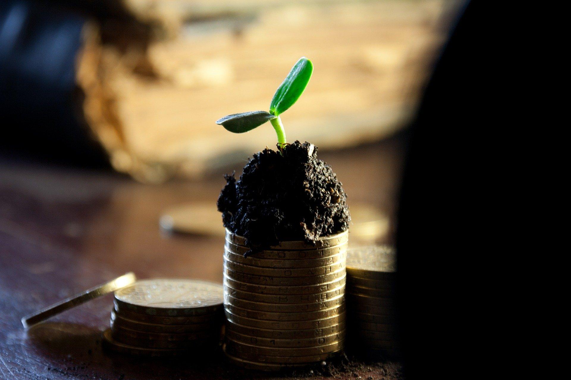 Акции трех компаний, которые достигли пика и готовы к продолжению роста